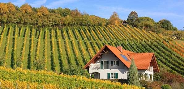 francia  lavoro per operai agricoli  stipendio 1300 euro