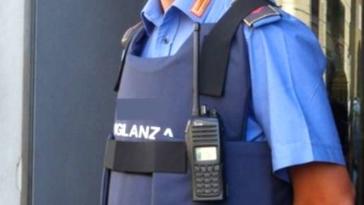 guardie giurate, vigilanza