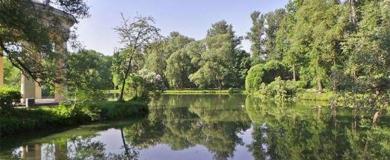 parco alberi piante