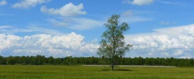 UNISCAPE: concorso video sui paesaggi