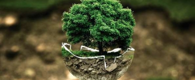 Ambiente-Sostenibile