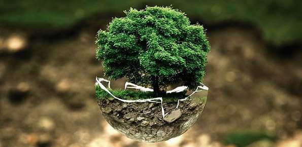 Ambiente Sostenibile
