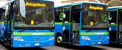 autoguidovie bus