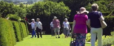 sociale, anziani, aiutare