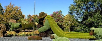 Murabilia Lucca: concorso per creare Giardini