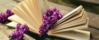 libri, letteratura, leggere