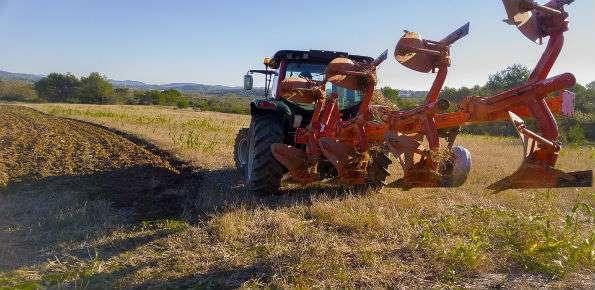 operaio agricoltura