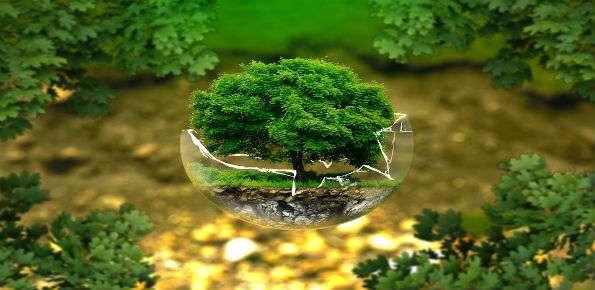 ecosostenibile biodiversita natura