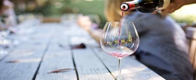 vino, sommelier, assaggiatori di vini