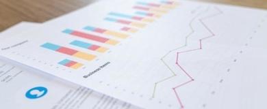servizi demografici grafici