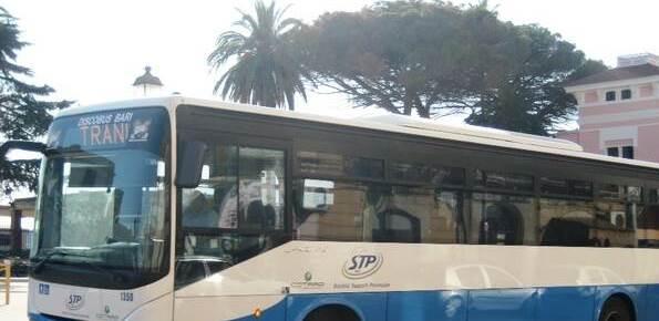 stp autobus