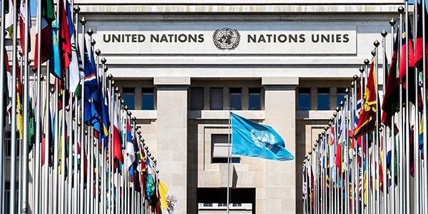 Lavoro ONU